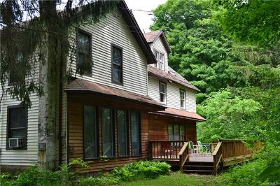 Delaware County Single Family Home For Sale: 715 Cooks Falls