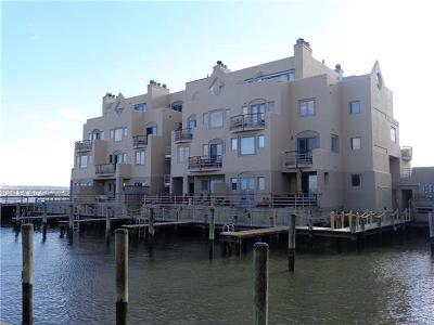 Nyack Condo/Townhouse For Sale: 2 Burd Street #3102