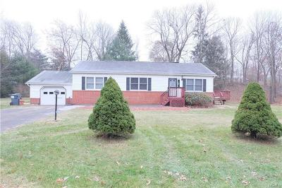 Orange County, Sullivan County, Ulster County Rental For Rent: 21 Cora Rose Lane