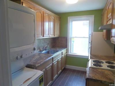 Orange County, Sullivan County, Ulster County Rental For Rent: 11 Orchard Street #A