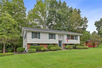 Westchester County Single Family Home For Sale: 11 Hunter Lane