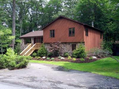 Sullivan County Single Family Home For Sale: 22 Lake Shore Drive West