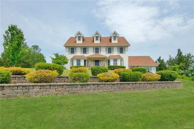 Chester Single Family Home For Sale: 61 Nancy Lane