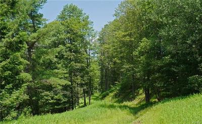 Roscoe NY Residential Lots & Land For Sale: $275,000