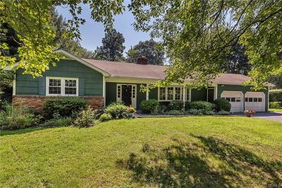 Westchester County Single Family Home For Sale: 19 Green Hill Road