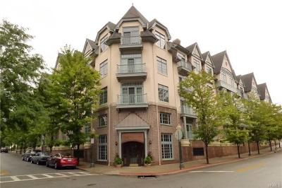 Pelham Condo/Townhouse For Sale: 55 1st Street #107