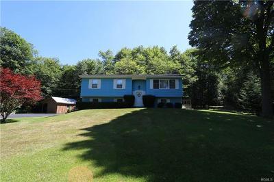 Livingston Manor Single Family Home For Sale: 409 Debruce Road