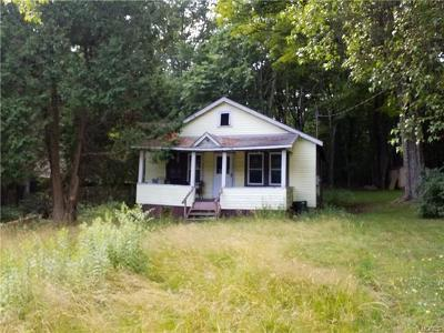 Ferndale NY Single Family Home For Sale: $19,999
