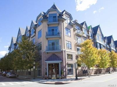 Pelham Condo/Townhouse For Sale: 55 1st Street #308