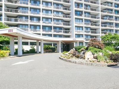 Hartsdale Condo/Townhouse For Sale: 300 High Point Drive #208