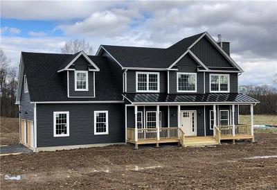 Walden Single Family Home For Sale: 67 Noelle Drive