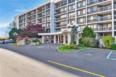 Hartsdale Condo/Townhouse For Sale: 200 High Point Drive #504