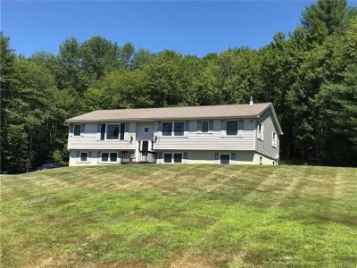 Sullivan County Single Family Home For Sale: 56 Carpenter Road