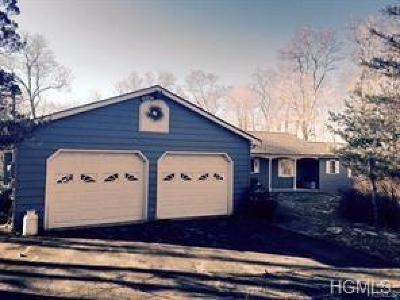 Washingtonville Single Family Home For Sale: 101 Helms Hill Road