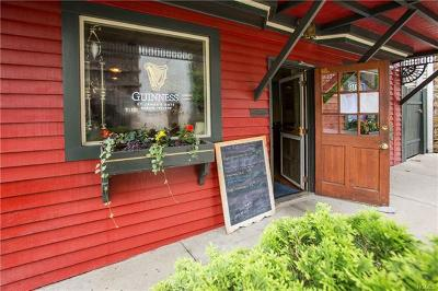 Callicoon, Callicoon Center Commercial For Sale: 19 Lower Main Street