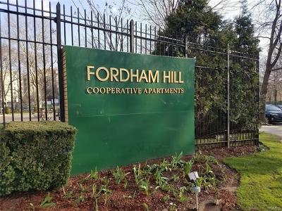 Co-Operative For Sale: 8 Fordham Hill Oval #14B