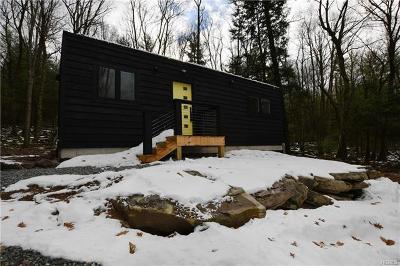 Narrowsburg NY Single Family Home For Sale: $282,000