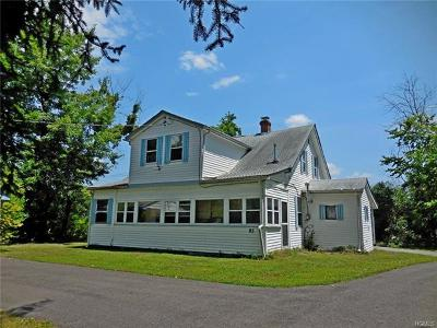 Wallkill Single Family Home For Sale: 95 Quaker Street