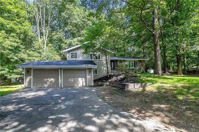 Washingtonville Single Family Home For Sale: 20 Kings Point Lane