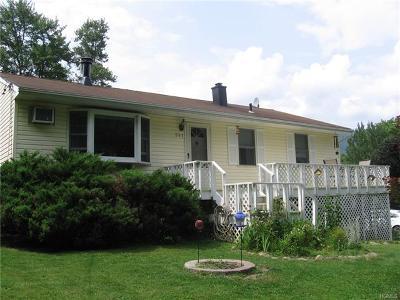 Wallkill Single Family Home For Sale: 341 Crookston Avenue