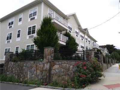 White Plains Multi Family 5+ For Sale: 18 Harmon Street