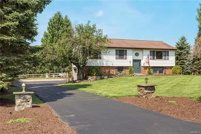 Wingdale Single Family Home For Sale: 9 Millers Lane