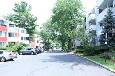 Hartsdale Condo/Townhouse For Sale: 1004 Colony Drive
