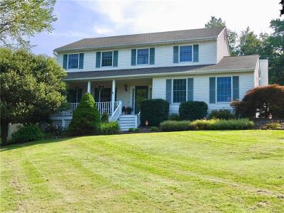 Washingtonville Single Family Home For Sale: 16 Ann Elizabeth Drive