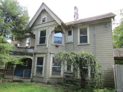 Wassaic Single Family Home For Sale: 18 Nelson Hill Road