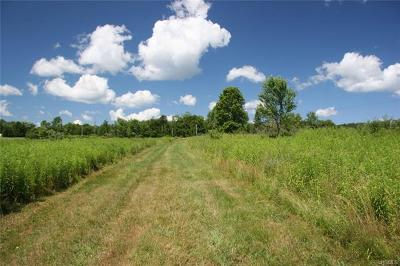 Callicoon, Callicoon Center Residential Lots & Land For Sale: 20 Kratz