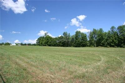 Callicoon, Callicoon Center Residential Lots & Land For Sale: 00 Cr 164