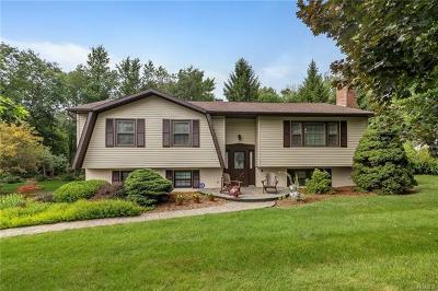 Washingtonville Single Family Home For Sale: 7 Puritan Lane