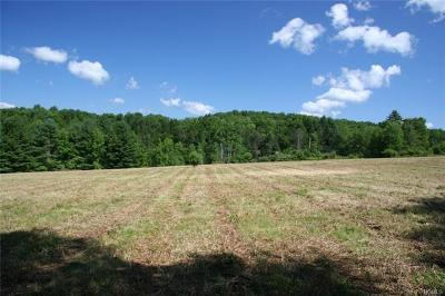 Callicoon, Callicoon Center Residential Lots & Land For Sale: 00 Gabel