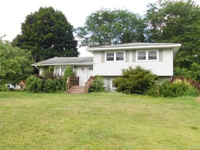 Westbrookville Single Family Home For Sale: 4 Elm Street