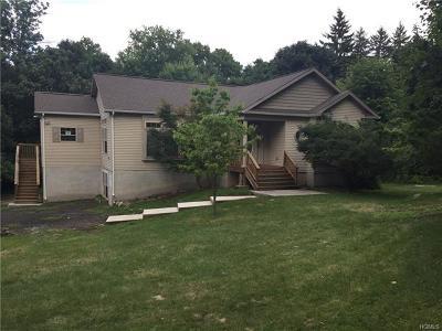 Single Family Home For Sale: 56 Van Orden Avenue