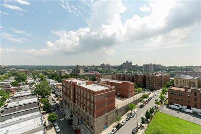 Co-Operative For Sale: 290 West 232nd Street #16C