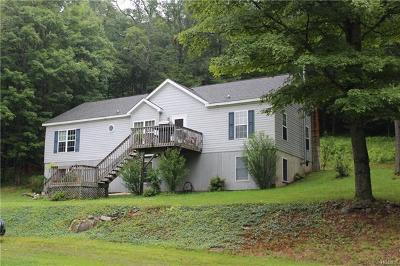 Livingston Manor Single Family Home For Sale: 356 East Benton Hollow Road East