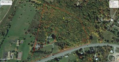 Residential Lots & Land For Sale: Lot 33.1 State Route 17b Route