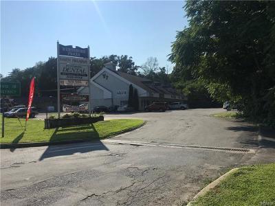 Wurtsboro Commercial For Sale: 187 Kingston Avenue
