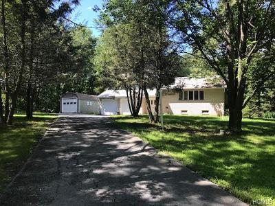 Port Jervis Single Family Home For Sale: 564 Mullock Road