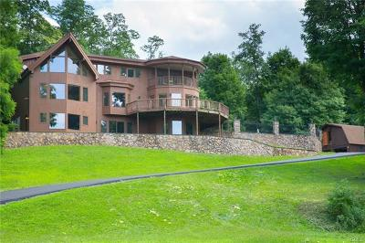 Dutchess County Single Family Home For Sale: 98 Old Albany Post Road
