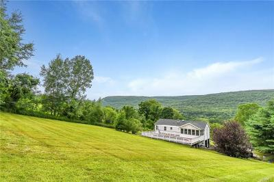 Highland Mills Single Family Home For Sale: 20 Woodbury Road