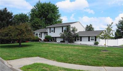 Washingtonville Single Family Home For Sale: 24 Belvoir Drive