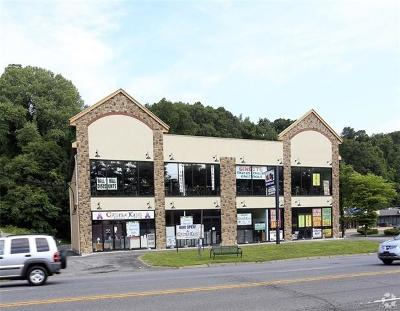 Hartsdale Commercial For Sale: 183 South Central Avenue