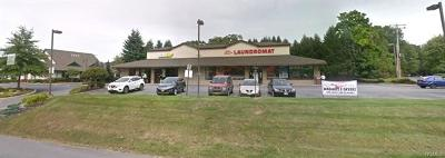 Newburgh Commercial For Sale: 76 North Plank Road