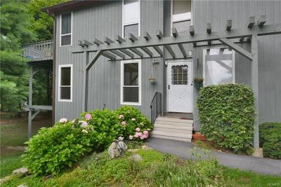 Peekskill Condo/Townhouse For Sale: 63 Bleakley Drive #63