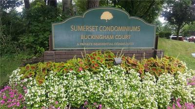 Pomona Condo/Townhouse For Sale: 96 Buckingham Court