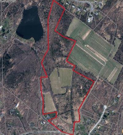 Chester Residential Lots & Land For Sale: 733 Craigville Road