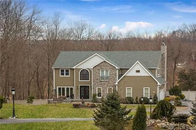 Putnam Valley Single Family Home For Sale: 6 Sassinoro Drive