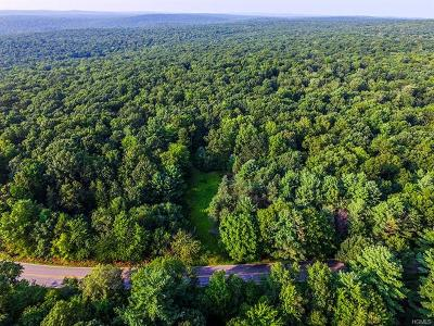 Residential Lots & Land For Sale: 664 Peenpack Trail